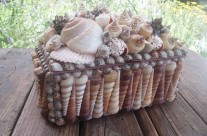 Shell Covered Basket