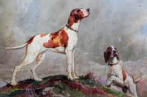Sporting Dog Watercolor Painting